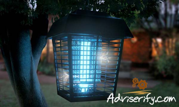Bug Zapper Review