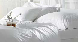 Egyptian Cotton Sheet Set by Exceptional Sheets